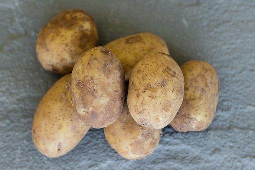 Potato, Vegetable, Potatoes, Vegetables, Food, Healthy