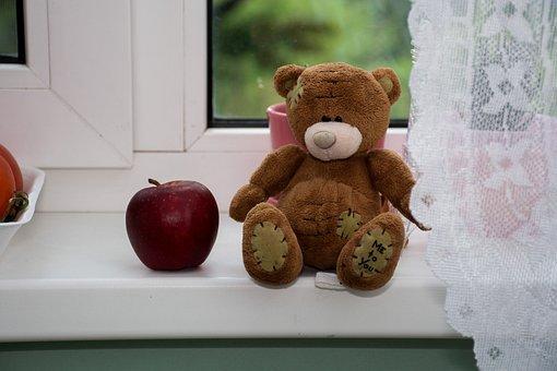 Teddy, Teddy Bear, Toy, Rain, Windowsill