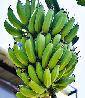 Bananas, Bunch, Fruits, Organic, Food, Fresh, Healthy