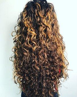Curly, Woman, Hair, Fashion, Elegance