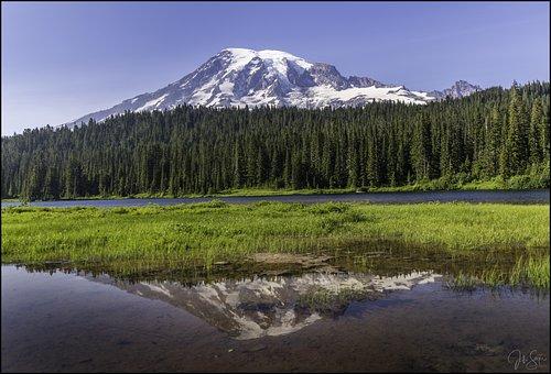Rainier, Nature, Landscape, Mountain, Scenic