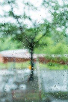 Rain, Drops, Drops On The Window, Blur, Bokeh, Yard