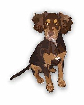 Dog, Brown, Animals, Pet, Illustration, Animal, Design