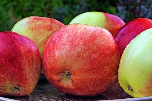 Apple, Grave Steiner, Pome Fruit, Summer Apple, Fruit