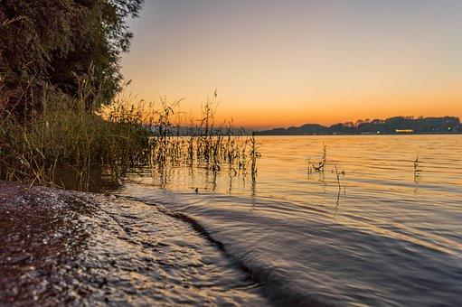 Novi Sad, Serbia, Europe, Nature, River, Danube