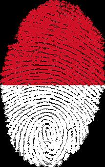Indonesia, Flag, Fingerprint, Country, Pride, Identity