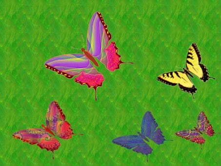 Butterflies, Green Background, Flying, Insects, Nature