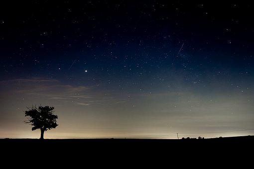 Night Sky, Silhouette, Lone Tree, Sky At Night