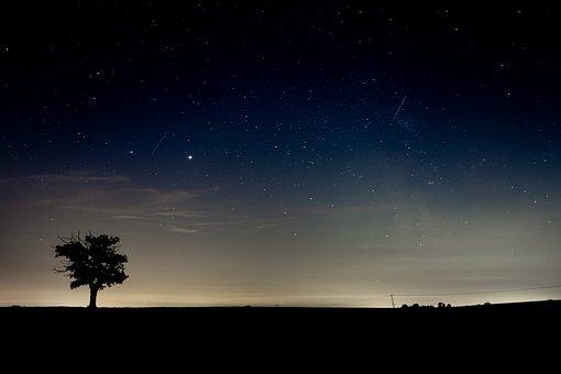 Night Sky, Silhouette, Lone Tree, Sky At Night