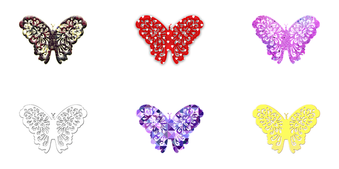Butterfly, Butterfly Illustration