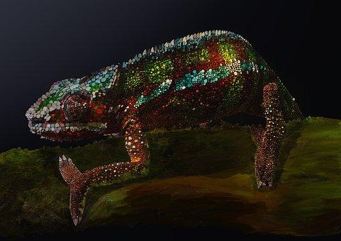 Chameleon, Color, Reptile, Animal, Nature, Wild, Green
