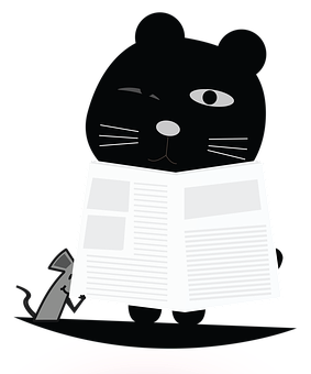 Cat, Reading, Newspaper