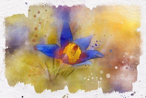 Anemone, Blue, Spring, Garden, Nature, Flora