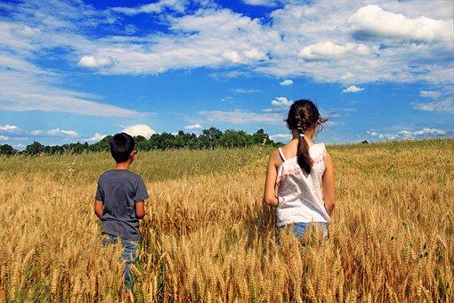 Golden, Barley, Friends, Childhood, Happy, Together