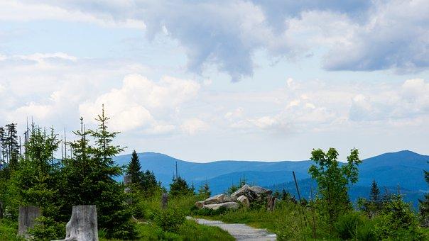 Germany, Bayerischer Wald, Dreisesselberg, Mountain
