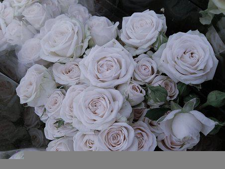 Roses, Bouquet, Black, White, Grey, Wedding, Love