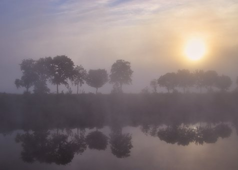 Fog, Trees, Water Reflection, Landscape, Nature, Sky