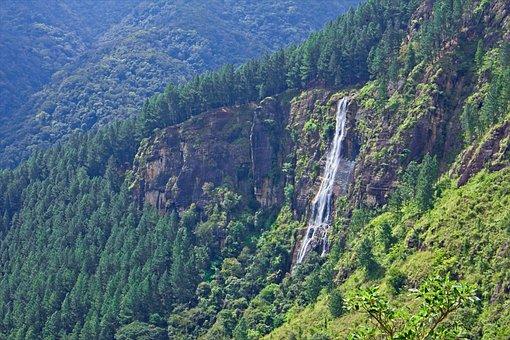 Nature, Waterfall, Landscape, Green, Wet, Rock, Scenic