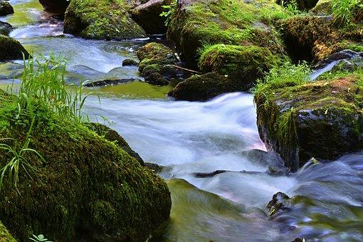 Nature, Creek, Forest, River, Landscape, Water, Rock
