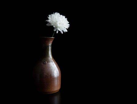 Flower, Vase, Black Background, Light, Partially Lit