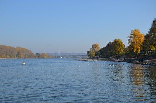 Wasser, Rhein, Rhine, River, Nature