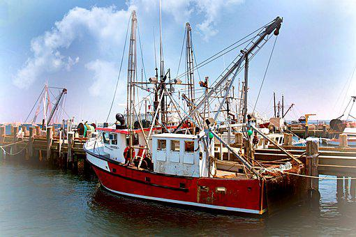 Boats, Fishing, Fishing Boats, Sea, Port