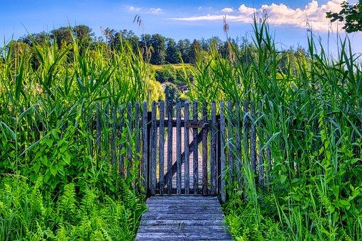 Garden Fence, Wood Fence, Wooden Door, Gate, Input