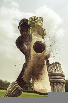 Cricket, Sports, Player, Cricketer, Batsman, Bat, Game
