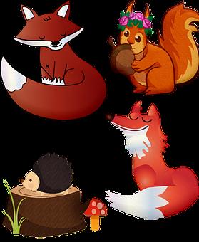 Fox, Forest Animals, Squirrel, Hedgehog, Animal, Forest