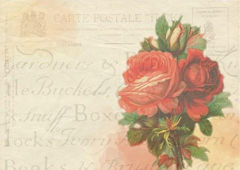 Rose, Post, Card, Background, Vintage, Flower, Love