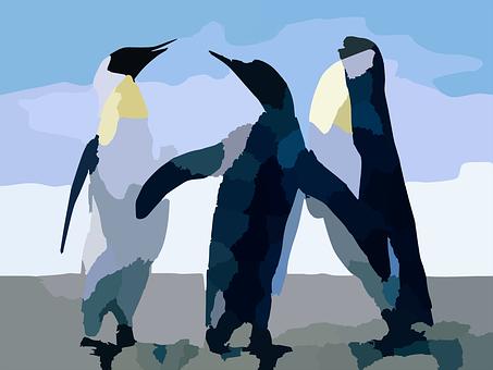 Penguins, Aquatic, Birds, Antartica