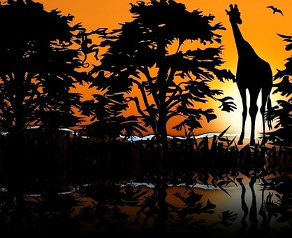 Giraffe, Zoological, Animals, Savannah, West, Sunset