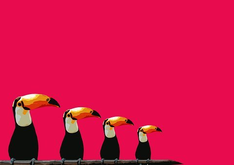 Toucan, Bird, Abstract, Birds, Background, Pink