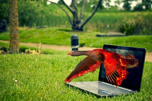 Editing, Magic, Photoshop, Composing, Fire, Red, Flame