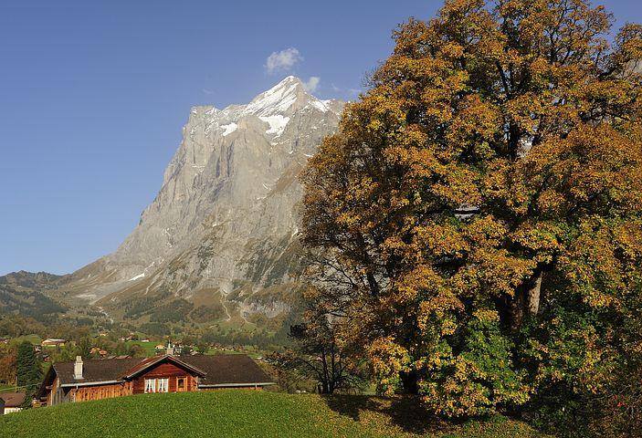 Grindelwald, Farmhouse, Autumn, Farmhouses