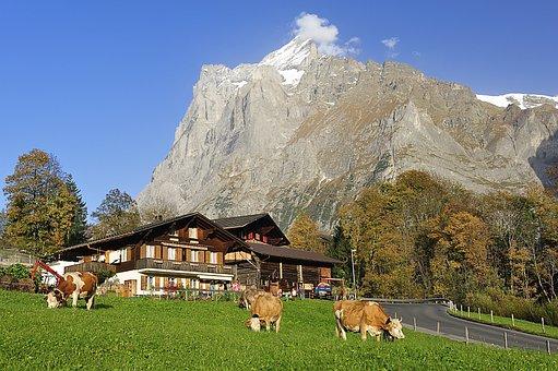 Grindelwald, Farmhouse, Mountain Hiking, Autumn