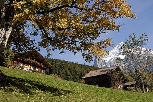 Farmhouse, Grindelwald, Autumn, Farmhouses