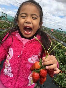 Kid Smiling Picking Strawberries, Kid, Harvest, Cute