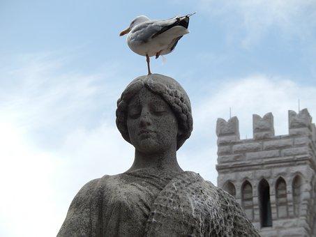 Seagull, Stature, Monte Carlo, Monaco, Gull