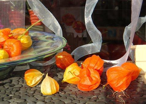Japanese, Lanterns, Orange, Ribbon, Flower