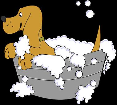 Animal, Bath, Canine, Clean, Dog, Pet, Soap, Tub