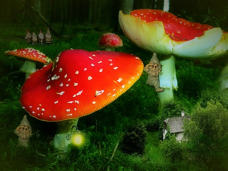 Fly Agaric, House, Dwarfs, Fairy Tales, Kobold, Cottage
