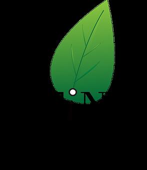 Logo, Forest, Symbol, Design, Nature, Sign, Icon