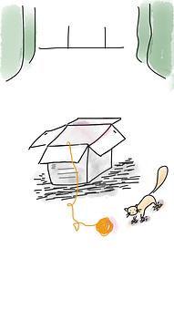 Kitten, Box, Outside, Outside The Box