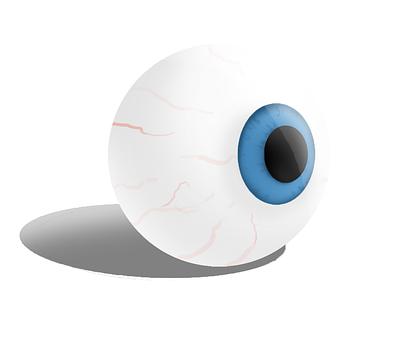 Eye, Eyes, Portrait, Face, Human, Nature, Blue
