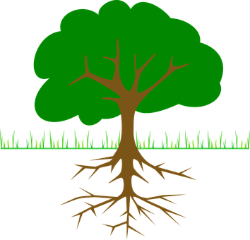 Tree, Branches, Root, Trunk, Planting