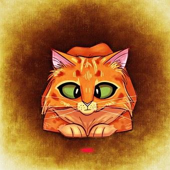 Cat, Funny, Mieze, Cute, Fun, Lurking, Squint