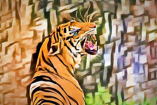 Tiger, Wildlife, Animal, Predator
