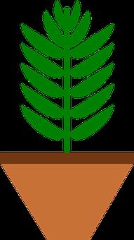 Brown, Color, Green, Home, Leaf, Leaves, Plant, Pot