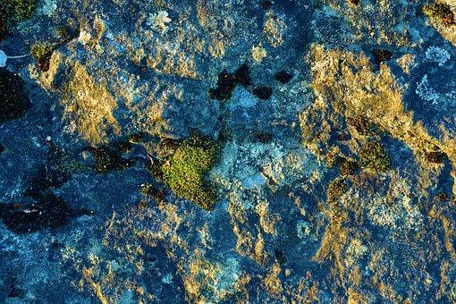Limestone, Rock, Colorful, Nature, Palatinate, Kalmit